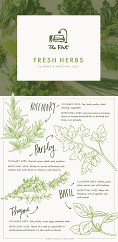 Such a beautiful graphic. The Flat - Fresh Herbs for culinary & medicinal uses Such a beautiful grap Web Design, Layout Design, Chart Design, Branding Design, Logo Design, Identity, Grafik Design, Fresh Herbs, Graphic Design Inspiration