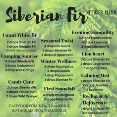 Siberian fir diffuser blends using Lemon, spearmint, wild orange, eucalyptus, on guard, peppermint, copaiba