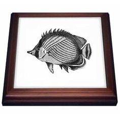 3dRose Butterfly fish - Tropical Fish vintage black and white illustration, Trivet with Ceramic Tile, 8 by 8-inch