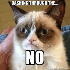 Grumpy Cat 1 - Dashing Through the.... no