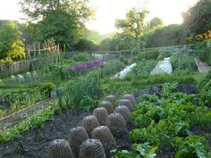 Ben Pentreath's vegetable garden.  I would love some of these cloches.