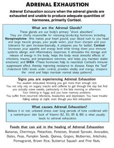 Adrenal Health | Natural Support
