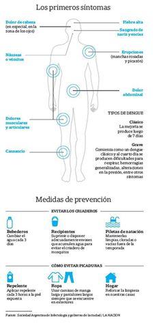 El mapa del dengue: cómo está la situación provincia por provincia