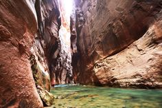 During the summer months, Utahns and tourists alike flock to the \nnational parks and forests that dot the state of Utah. If you are taking \na trip to see the famous arches or to backpack through Bryce Canyon, \nhere are a few things you should know. Places To Travel, Places To See, Travel Destinations, Narrows Zion National Park, Hiking Spots, Backpacking Trails, Hiking Trails, National Parks Usa, Adventure Is Out There