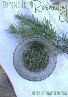 Drying Fresh Rosemary | Chickadee Homestead (.com) #rosemary #herbs #dehydrating…