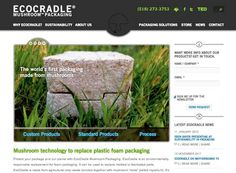 EcoCradle Packaging | Ecovative Design.  This is so awesome - this company grows packaging materials rather than manufacturing them. Definitely worth a look!