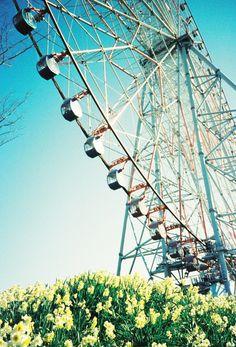 観覧車と水仙 | ぺんたま - フリー写真素材・無料ダウンロード ノスタルジック、トイカメラ風おしゃれ写真