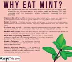 Cooking Tips Podcasts | Why Eat Mint from RecipeThis.com