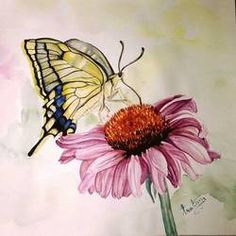 Harmony by Pratima Kumar Artwork Online, Online Painting, Wildlife Paintings, Buy Flowers, Indian Artist, Flower Paintings, Beautiful Flowers, Floral, Plants