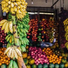 Vibrant tropical fruit stalls of Thailand 🍌✧ 🍉✧🍊 ✧ #tropicalfruits ❥ • • • • #blogger #instagood #instadaily #nutrition #smoothies #banana #foodporn #photography #vegan #fruit #summer #plantbased #lunch #weekend #like4like #followme #l4l #healthyfood #eattherainbow #wholefoods #watermelon #Thailand #foodmarkets