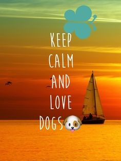 Make Funny Keep Calm Posters With This App and Have Lots of Fun!!!