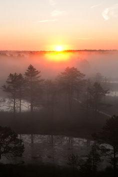 Viru Raba, Estonia