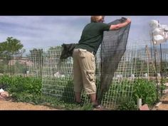 Gardening How-To: Carol O& describes how to help your spring plants survive the heat. Raised Garden Beds, Raised Beds, Shade Cloth Garden, Shade Canopy, Garden Canopy, Spring Plants, Shade Structure, Square Foot Gardening, Beat The Heat