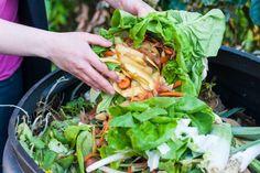 Legge contro lo Spreco Alimentare: cosa ne pensa Last Minute Market?