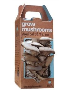 I want to grow mushrooms! #FCThankful