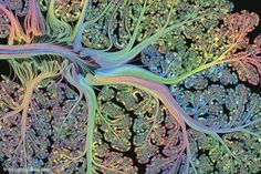 Scientists made stunning art out of something incredibly important, personal, and not often seen.