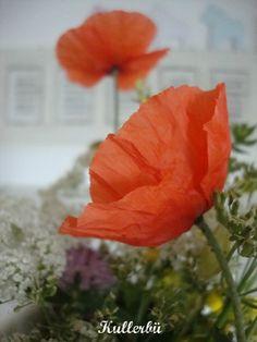 *Kullerbü*: Blumen