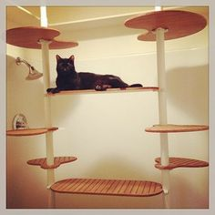1000 images about inspirace ikea cat stolmen on pinterest cat trees cat towers and ikea - Modern cat tree ikea ...
