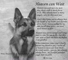 Dog Names Discover Heaven can Wait Art Print by Sue Long Heaven Can Wait Print by Sue Long. All prints are professionally printed packaged and shipped within 3 - 4 business days. Choose from multiple sizes and hundreds of frame and mat options. I Love Dogs, Cute Dogs, Pet Loss Grief, Loss Of Dog, Dog Poems, Poems About Dogs, Heaven Can Wait, Pet Remembrance, Pomes