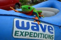 Javi the Frog getting ready to begin its rafting adventure with Wave expeditions - La Fortuna de San Carlos, Alajuela