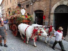 Festa De Le Cove ~ Harvest Festival Italian Style