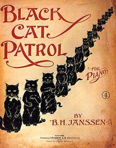 8x10 Cotton Canvas Print Black Cat Patrol by PreciousMemoriesOne
