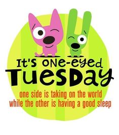 It's one-eyed Tuesday - one side is taking on the world while the other is having a good sleep - Hallmark's Hoops and Yoyo Tuesday Quotes Funny, Its Friday Quotes, Happy Day Quotes, Good Night Quotes, Coffee Quotes Funny, Funny Quotes, Cartoon Quotes, Coffee Humor, Motivational Quotes