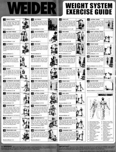 Weider 8700 Home Gym Exercise Chart Weider 8510 Workout Chart Joe Weider Workouts Charts Printable Weider Ultimate Body Works Exercises Gold Gym Exercise Chart Total Gym Workouts, Home Gym Exercises, At Home Workouts, Boflex Workouts, Fitness Exercises, Joe Weider, Gym Workout Chart, Workout Guide, Workout Plans