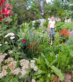 I've compiled a list of 150 edible and functional plants growing in my permaculture garden. These are growing in a diverse polyculture on ou...