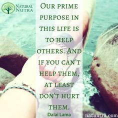 ''Our prime purpose in this life is to help others. And if you can't help them, at least don't hurt them.'' -Dalai Lama www.natnutra,com