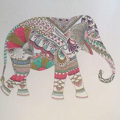 el reino animal una aventura para colorear - Buscar con Google