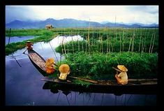 inle-lake-floating-garden-burma_opt