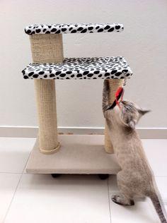 GIMNASIOS PARA GATOS. PARA QUE NO DAÑEN LOS MUEBLES. #gatos #cats #gym cats #fique #yute #rascador #gimnasioparagatos #catscondo #gyms #casita #árbol #kyttys #tree #scratching #post #toys #climbing #pets #mascotas #Villavicencio  WHATSAPP  3️⃣1️⃣3️⃣8️⃣9️⃣0️⃣7️⃣ 2️⃣7️⃣4️⃣ ALTO..............: 65 cm ANCHO..........: 50 cm PESO APROX: 7 k