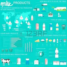 Image result for types of dairy infographic