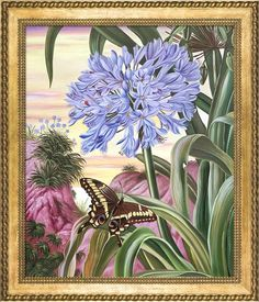 Overstock Art Blue Lily and Large Butterfly by Marianne North (Framed Canvas)