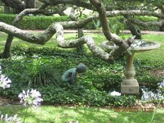 Cummer Gardens, Jacksonville, Fl