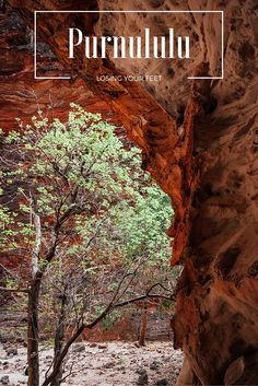 Purnululu National Park in  Western Australia is a stunning area of the Kimberly to spend a day or two. Access to this UNESCO site is only by 4 wheel drive.