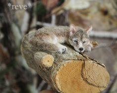 OOAK Realistic Miniature ~ Wolf pup ~ Handmade 1:12 Sculpture * Reve #Handmade