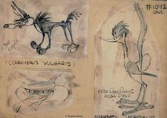 Chuck Jones' original character designs for the Road Runner & Coyote.