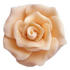 Trandafiri mici 42 buc culoarea piersica Flowers, Plants, Plant, Royal Icing Flowers, Flower, Florals, Floral, Planets, Blossoms