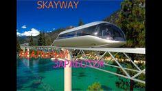 SkyWay реальный ЗАРАБОТОК на технологиях