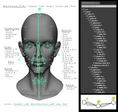 Sheet of Face-BlendShapes and joints for animation. References to preferred skeleton Tree for Unreal Engine 4 and list of Blenshapes.  On this one: Joints By: Caroline Petri