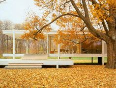 live in the forest MOOD during four season Farnsworth house Mies van der Rohe
