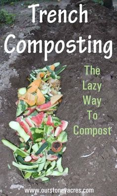 Trench composting fits perfectly into my crazy gardening life. It's much simpler than trying to constantly have a pile of cooking compost. Trench composting lets my garden create it's own soil building organic matter.ourstoneyacres to le Garden Compost, Garden Soil, Vegetable Gardening, Veggie Gardens, Garden Beds, Box Garden, Gardening Tools, Organic Vegetables, Growing Vegetables