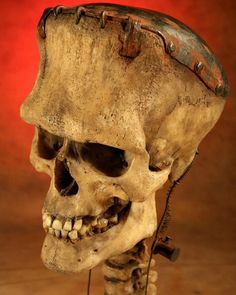 A very realistic Frankenstein creations skull! Very cool love the rust detail and wires going up through the back to the skull cap to keep the brain alive lol