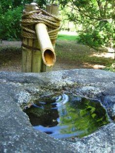 #zen garden