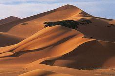 le désert Algérie - Recherche Google