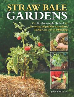 Method for Growing Vegetables Anywhere and with No Weeding