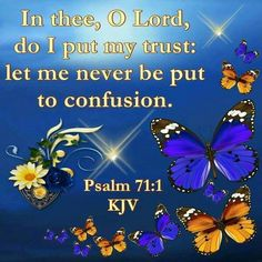 Psalm 71:1 KJV