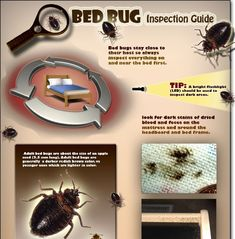 bed bug inspection guide...thanks I'll be sleeping in my car !
